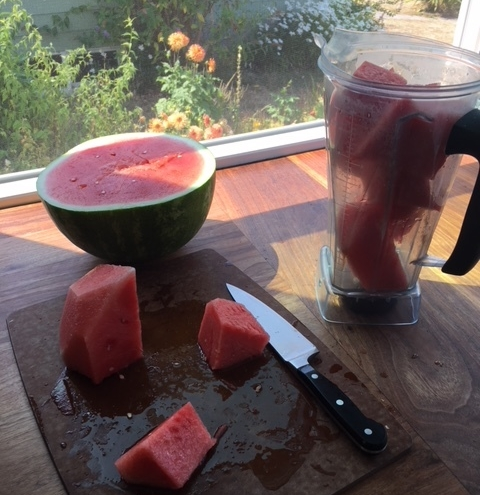 watermelon blender.JPG
