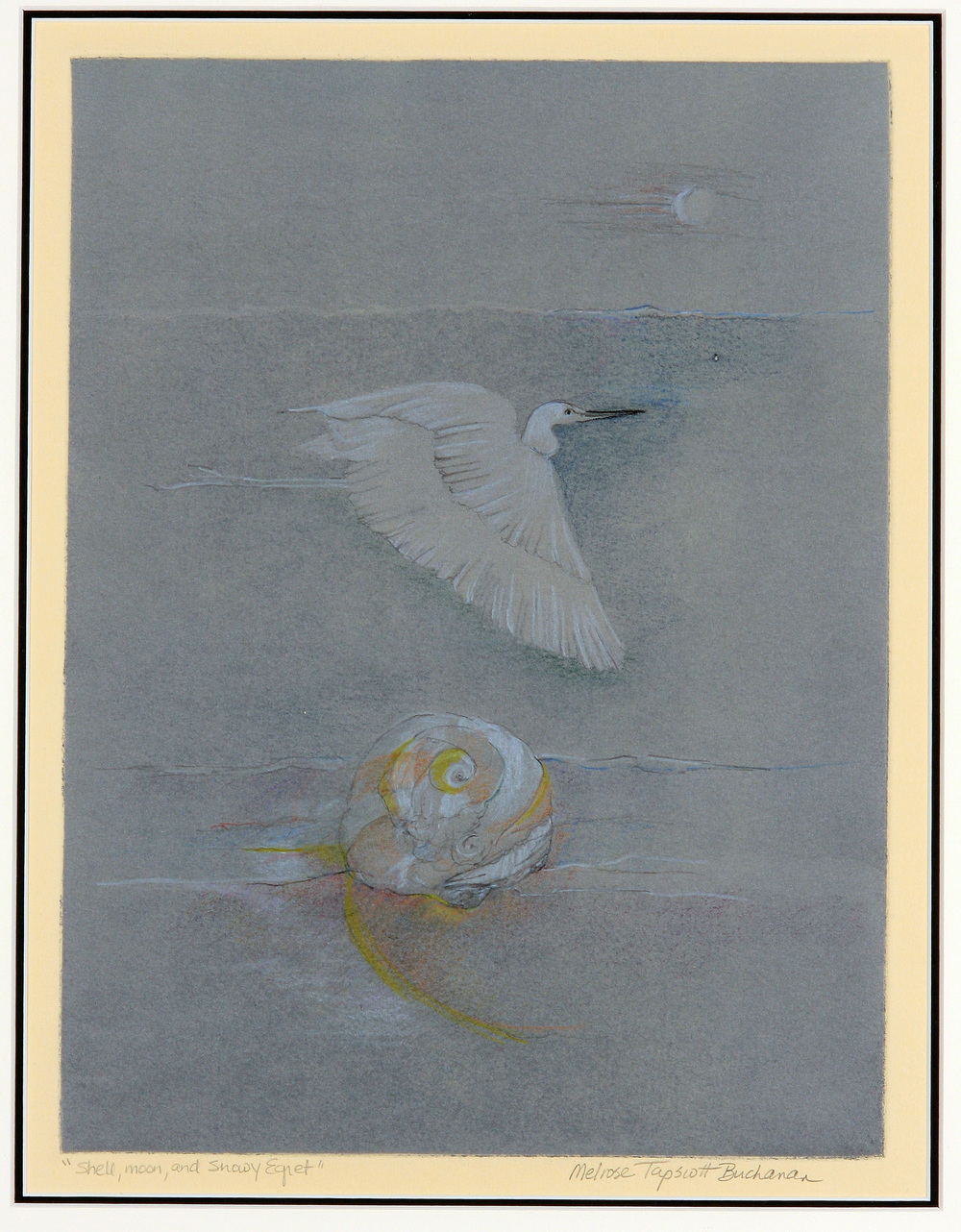 Shell, Moon, and Snowy Egret