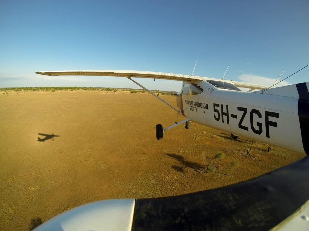 TZ-plane-3.jpg