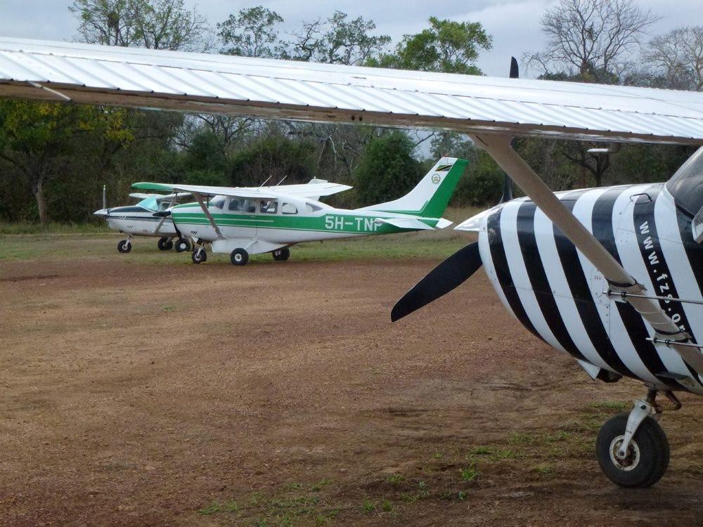 TZ-plane-4.jpg