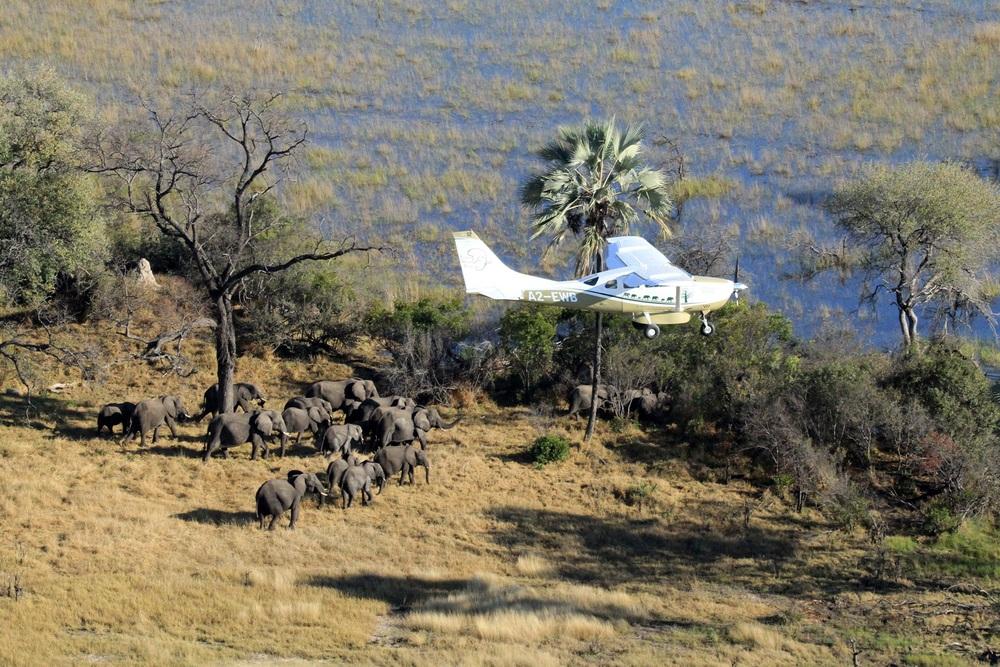EWB-Botswana-10-flying.jpg