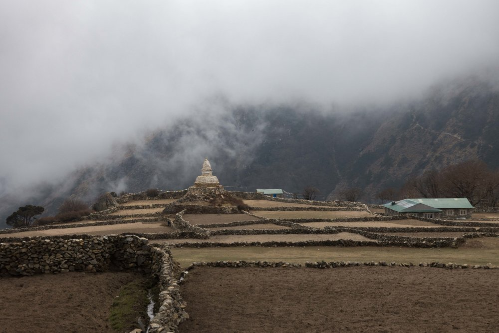 Terraces and a chorten in Phortse