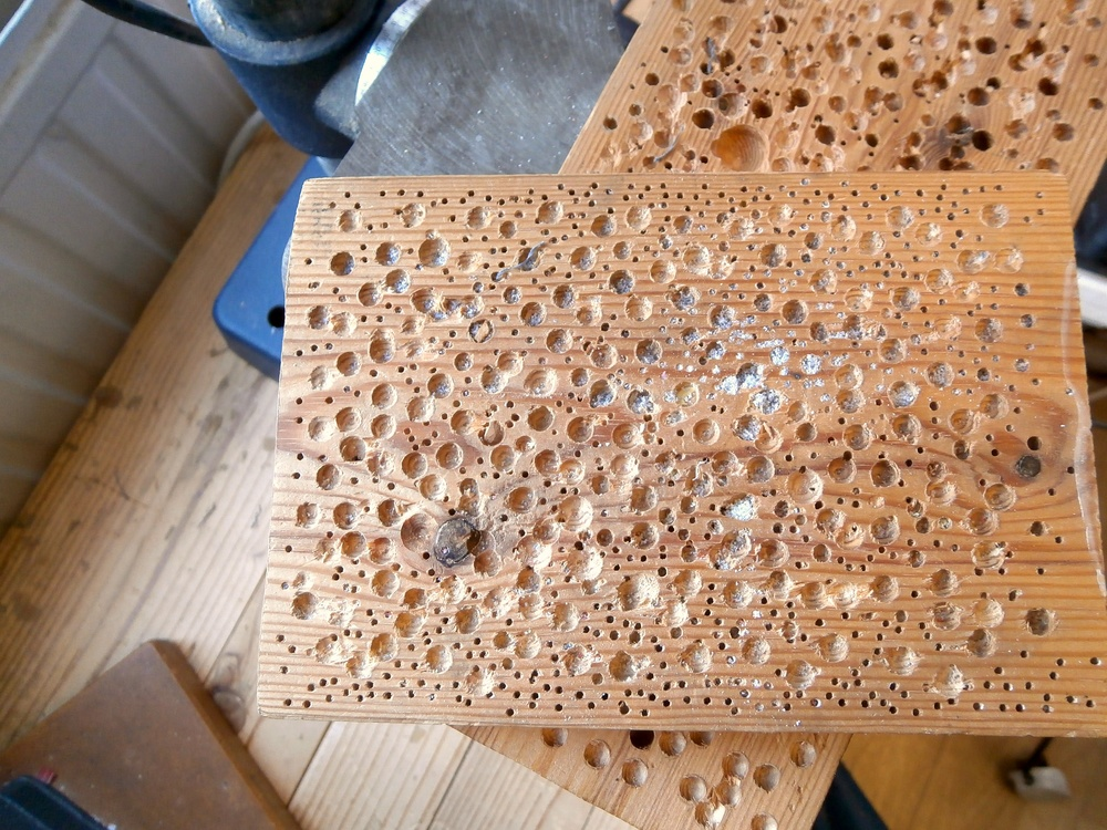 wood with holes.jpg
