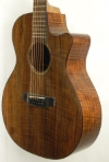 Quote 1944824 - GP 12 string Claro