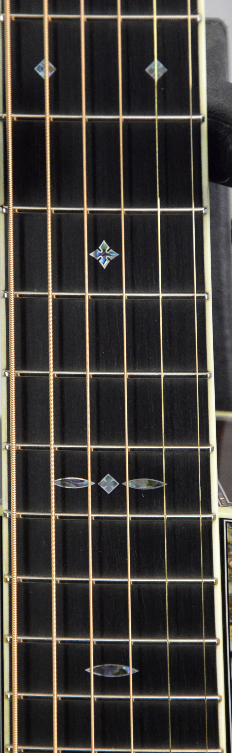 Q-2398924 S-1830638 00012 Honduran Carp (5).JPG