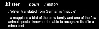 ChannelELSTSER-Elster-Jennifer-Elster
