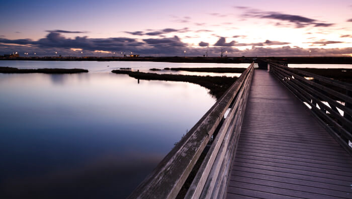 Bolsa-Chica-Wetlands-Reserve