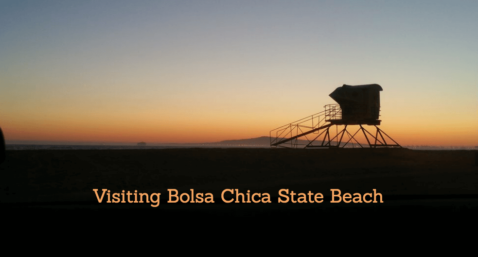 High Quality Guide To Bolsa Chica State Beach: Fire Pits, Parking