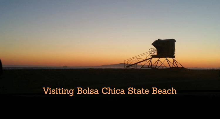 Bolsa-Chica-State-Beach-Visitors-Guide