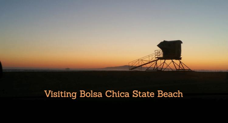 Bolsa-Chica-State-Beach