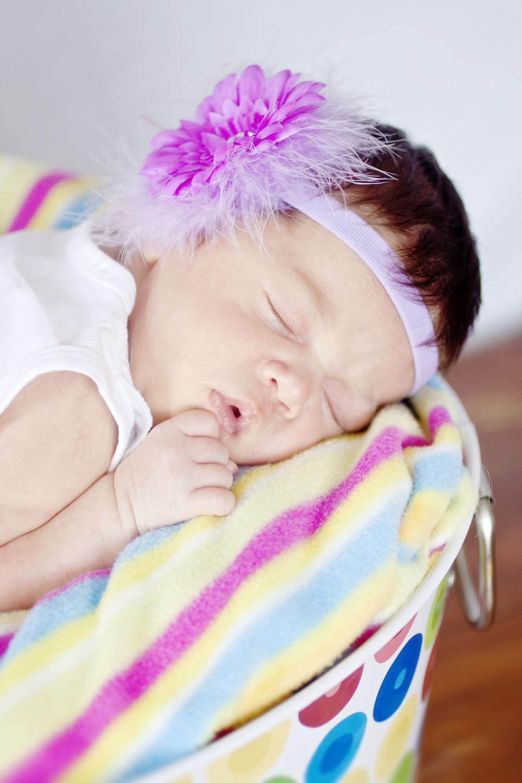 purpleflowercolor_1.jpg