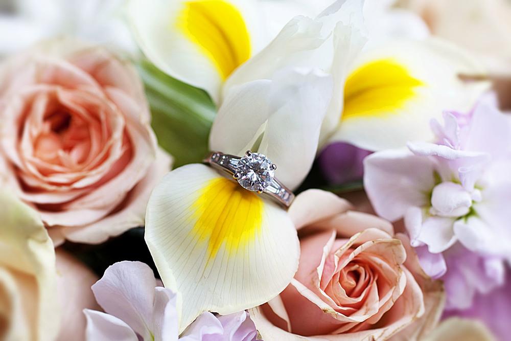ringflower_1.jpg