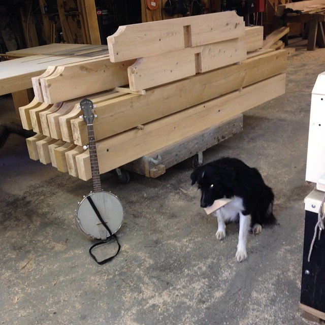 Some of my favorite things!!! #timberframing #borbercollie #banjo