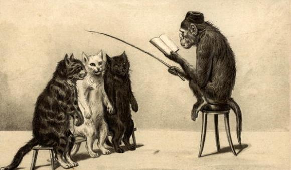 monkeyTeacher