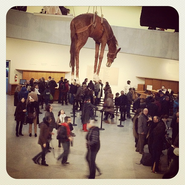It's all fun and games 'till somebody hoists a horse (Taken with  Instagram  at Guggenheim Museum)