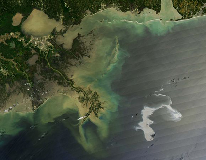 Remember Folks:  It's Still Earth Day In The Gulf Of Mexico (and will be for quite some time). via blogs.discovermagazine.com