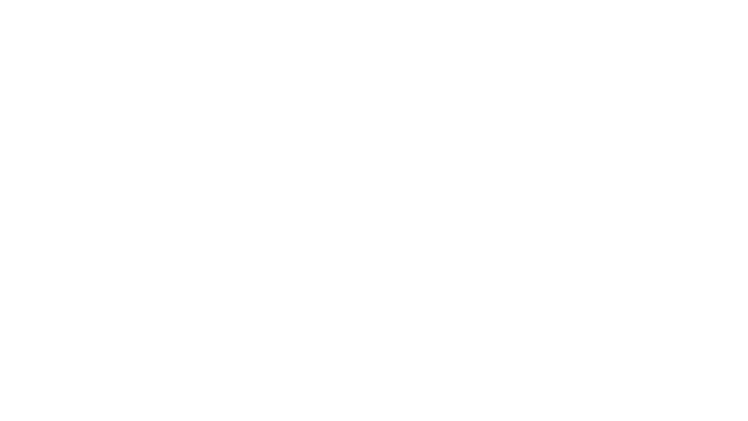 Chris Allen Band
