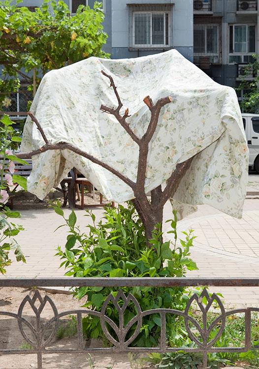 Sidewalk Sculptures