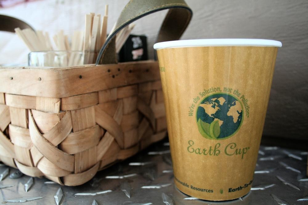 Redbud Earth Cup 2.JPG