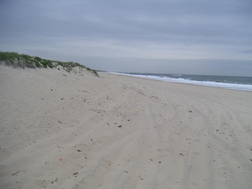 BEACH 4-03.JPG