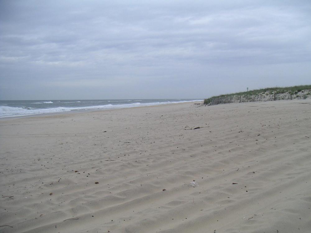 BEACH 4-04.JPG