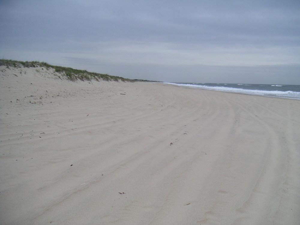 BEACH 4-05.JPG