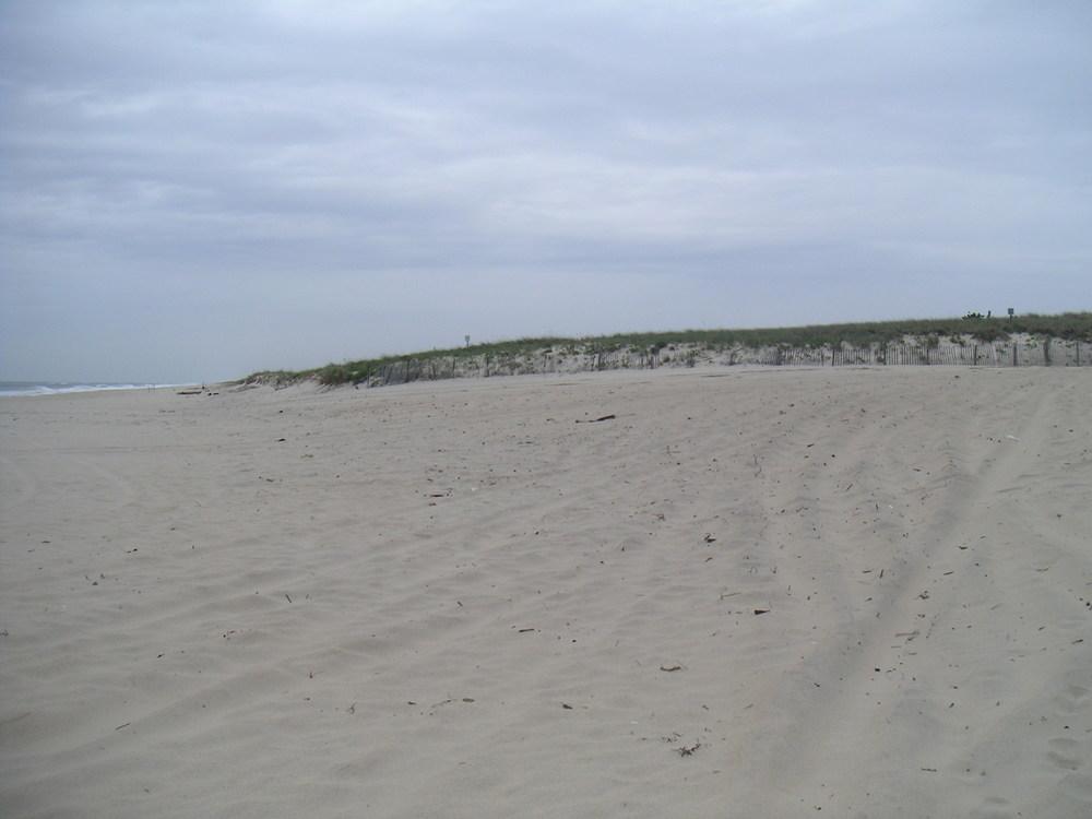 BEACH 4-06.JPG