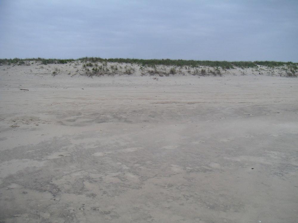 BEACH 4-09.JPG