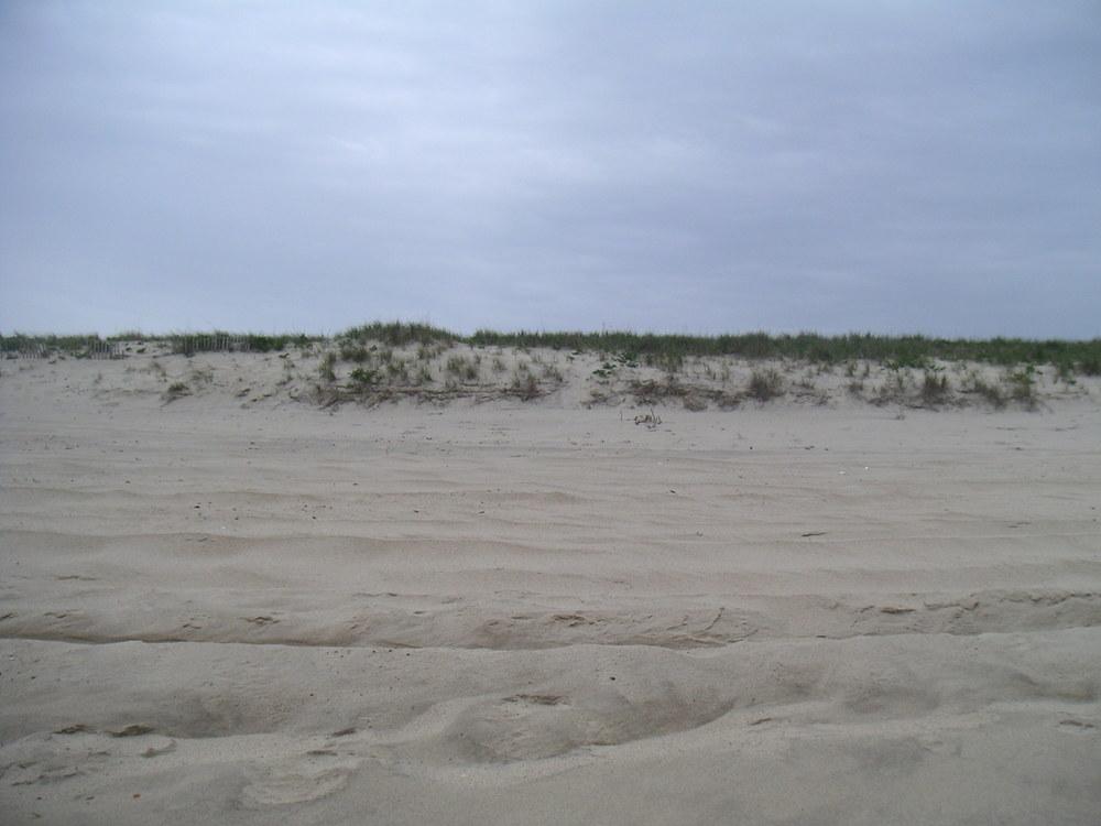BEACH 4-11.JPG
