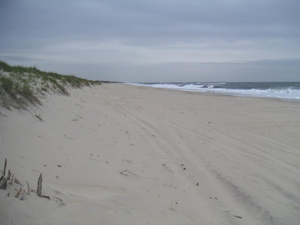 BEACH 4-12.JPG