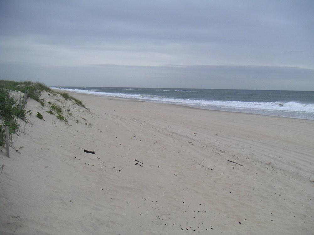BEACH 4-14.JPG