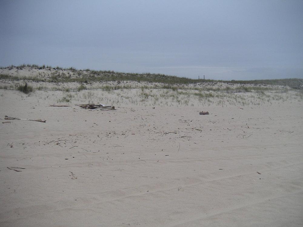 BEACH 3-04.JPG