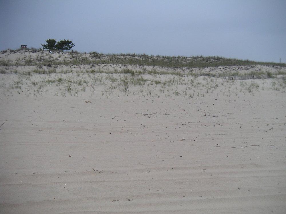 BEACH 3-06.JPG