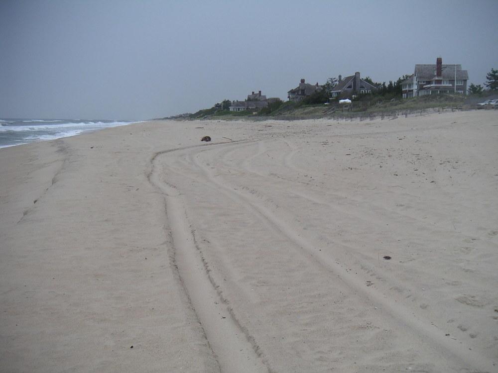 BEACH 3-05.JPG