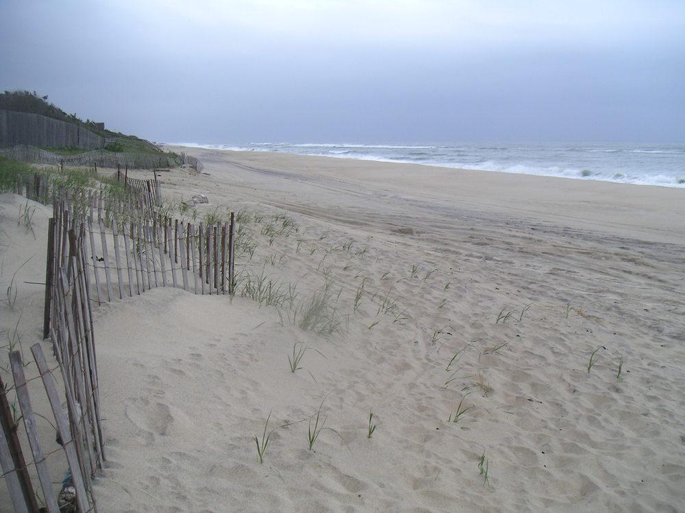 BEACH 2-02.JPG