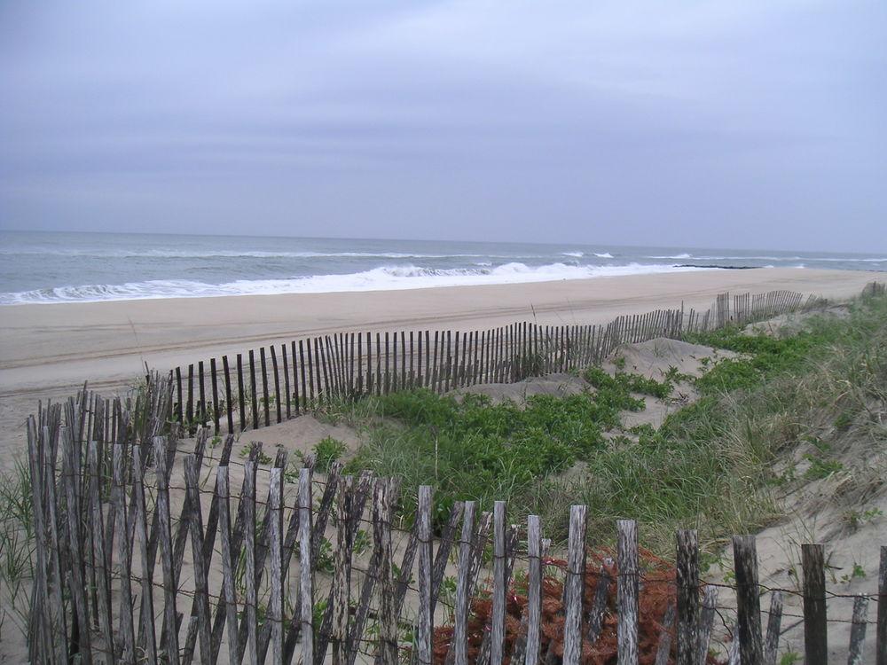 BEACH 2-04.JPG