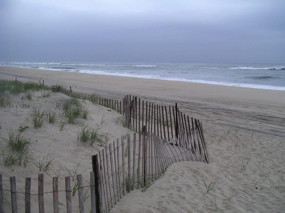 BEACH 2-05.JPG