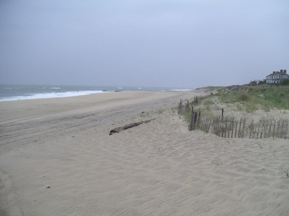 BEACH 2-08.JPG