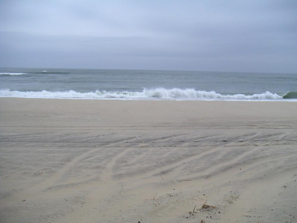 BEACH 2-09.JPG