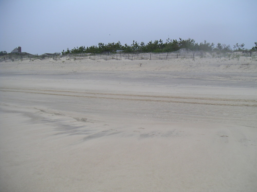 BEACH 2-17.JPG