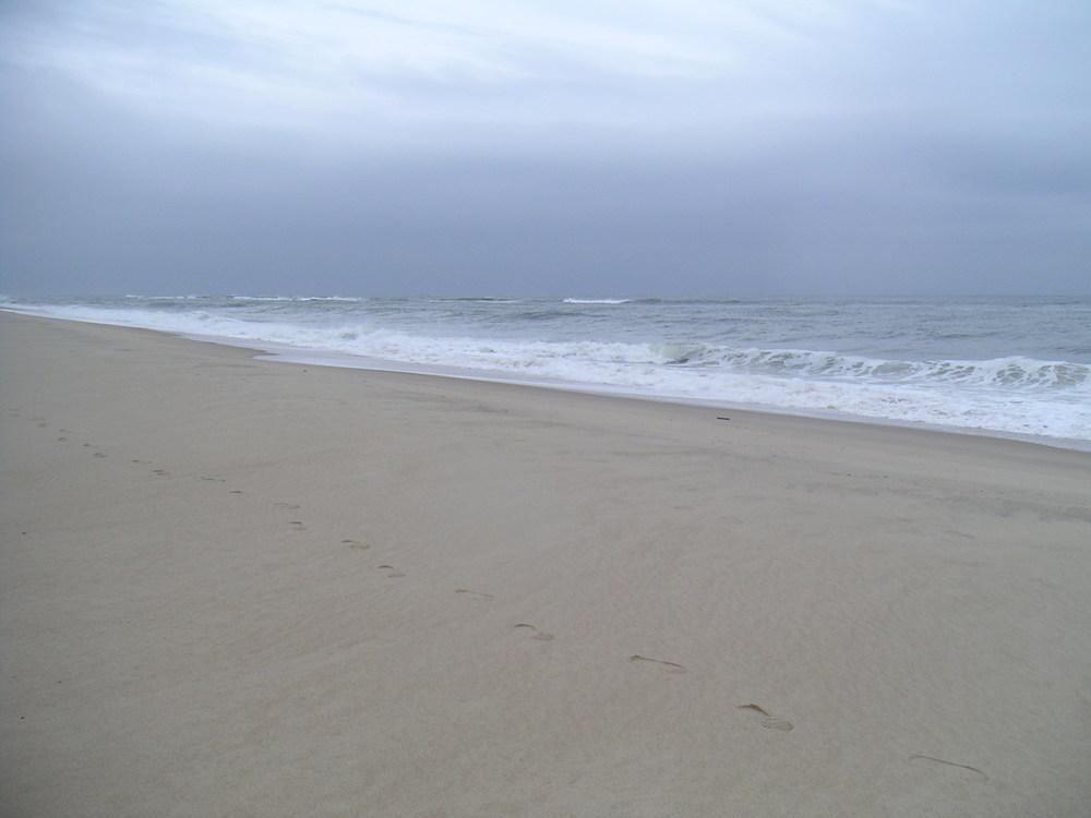 BEACH 2-19.JPG