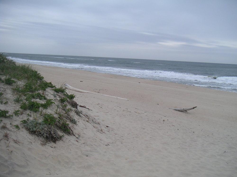 BEACH 1-03.JPG