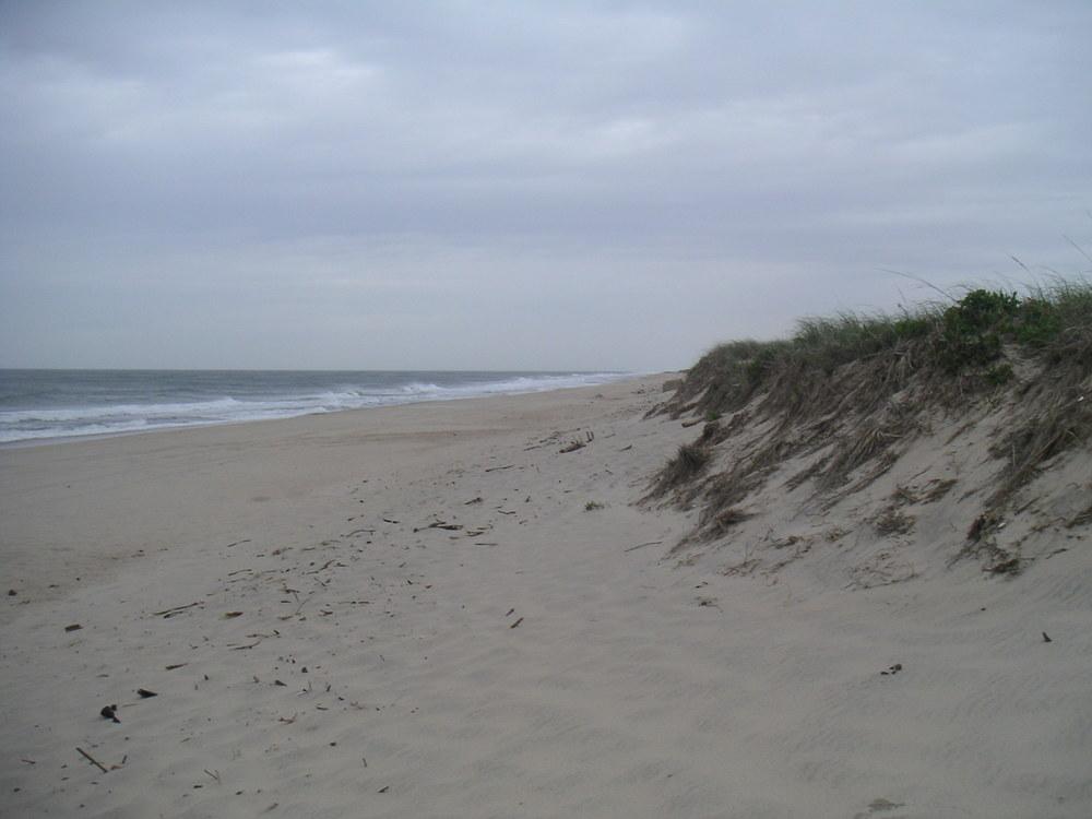 BEACH 1-04.JPG