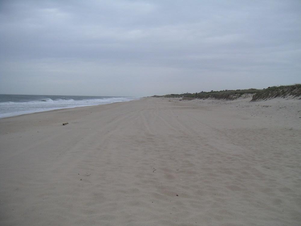 BEACH 1-07.JPG