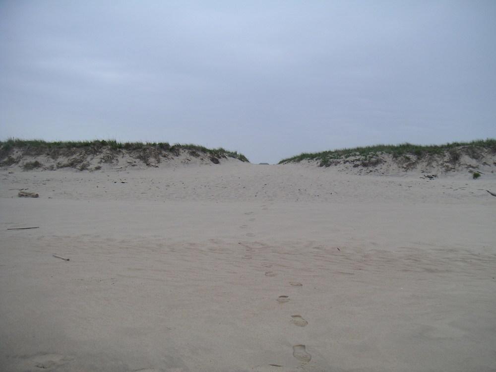 BEACH 1-09.JPG