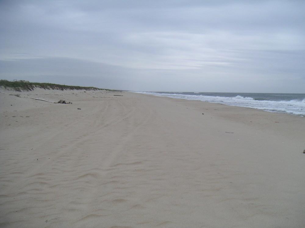 BEACH 1-08.JPG