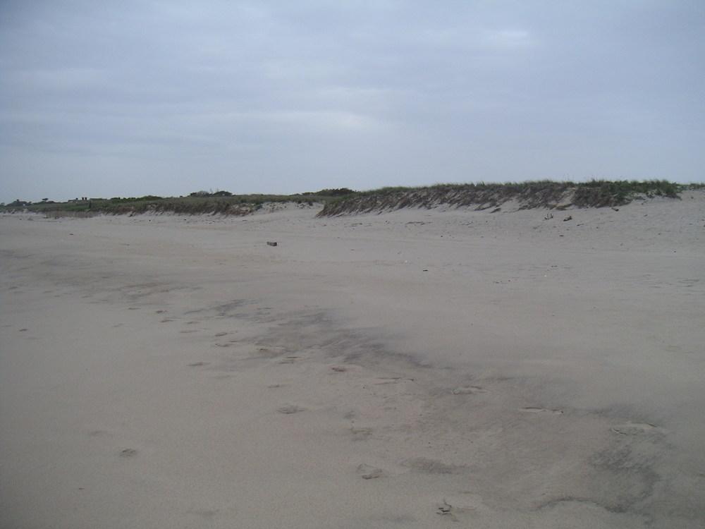 BEACH 1-10.JPG
