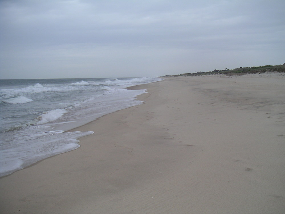 BEACH 1-11.JPG