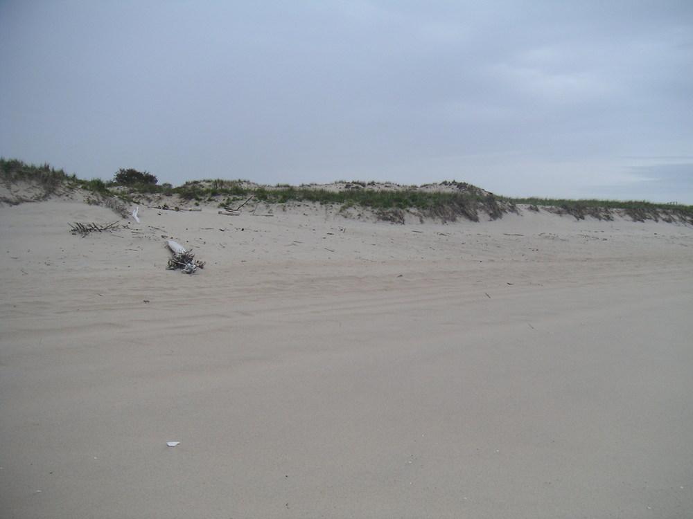 BEACH 1-14.JPG