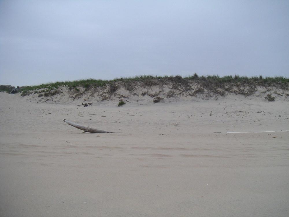 BEACH 1-13.JPG